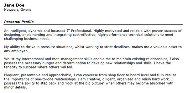 summary for an it professional the first