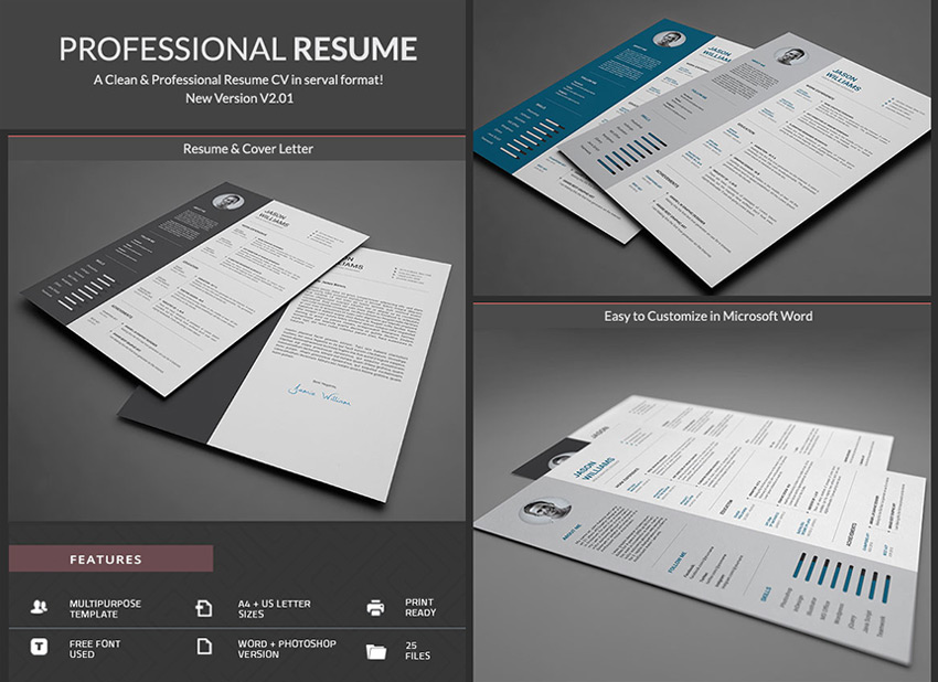 20  Professional MS Word Resume Templates With Simple Designs Simple Professional Word Resume With CV Template