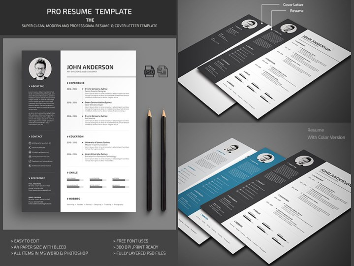 20  Professional MS Word Resume Templates With Simple Designs Professional Microsoft Word Resume Template