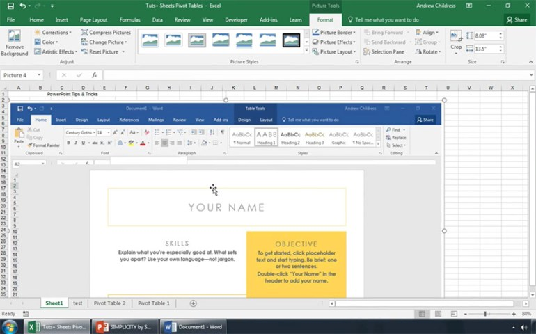 Screenshot of Word screen into Excel