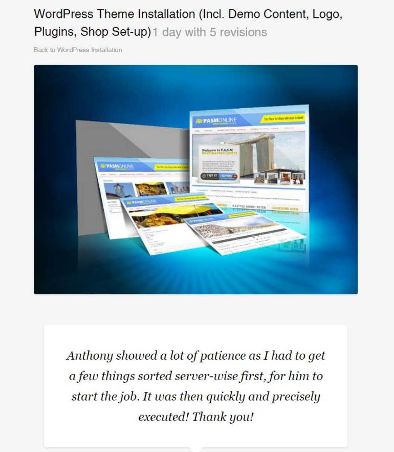 WordPress Theme Installation Incl Demo Content Logo Plugins Shop Set-up by CXWebExperts