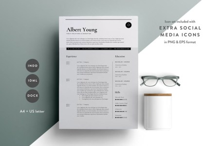 Best of 2017  Stylish  Professional CV   Resume Templates Resume Template