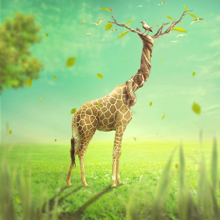 How to Create a Surreal Giraffe Photo Manipulation With Adobe Photoshop