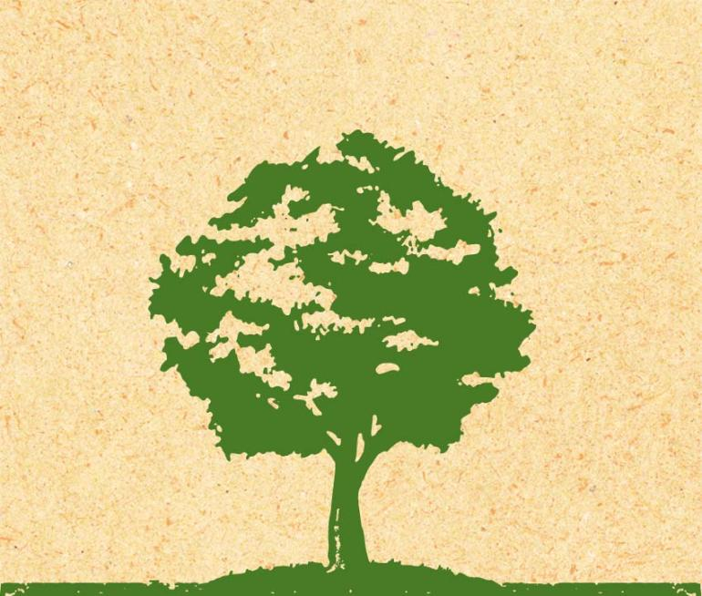 Illustration of a maple tree