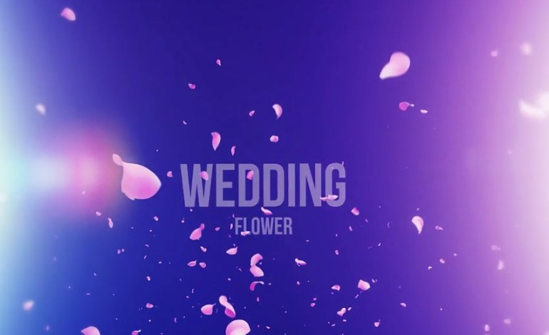 Wedding Flower Film Studio