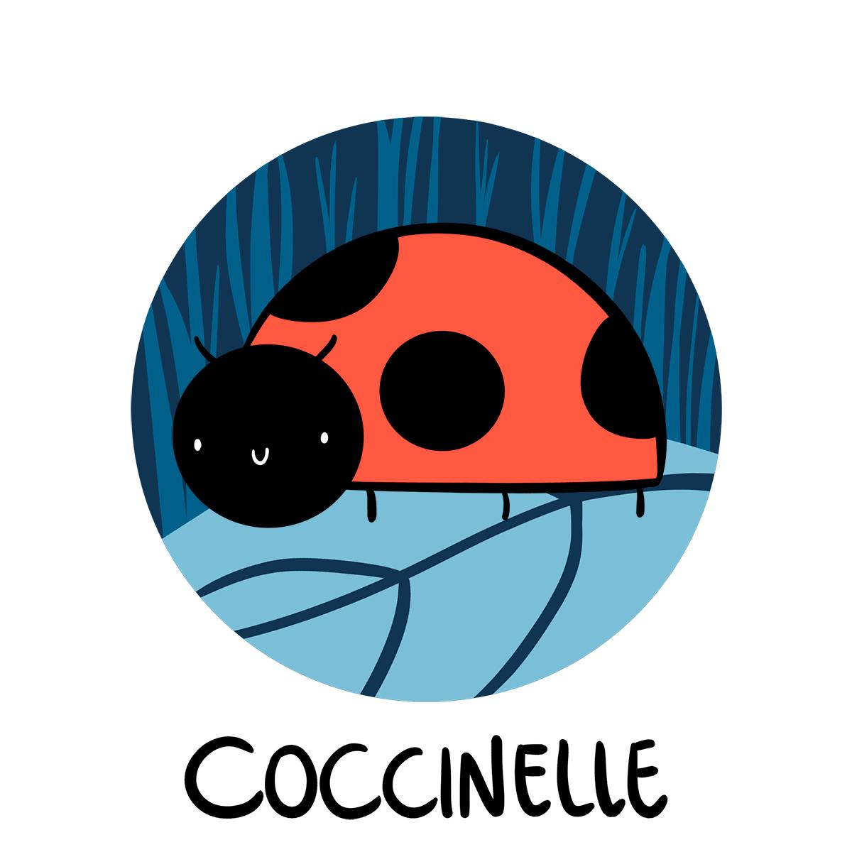 Coccinelle en francés