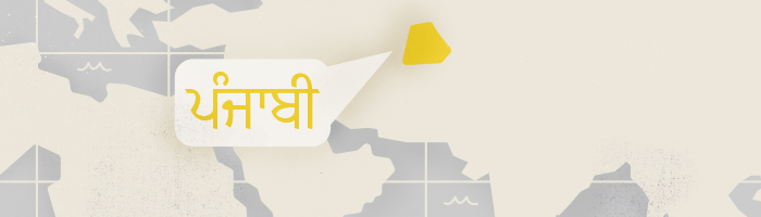 Most common languages — Punjabi