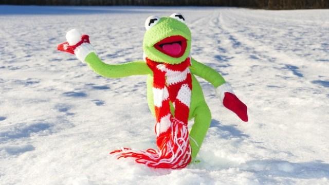 Le tour du monde des sports d'hiver insolites