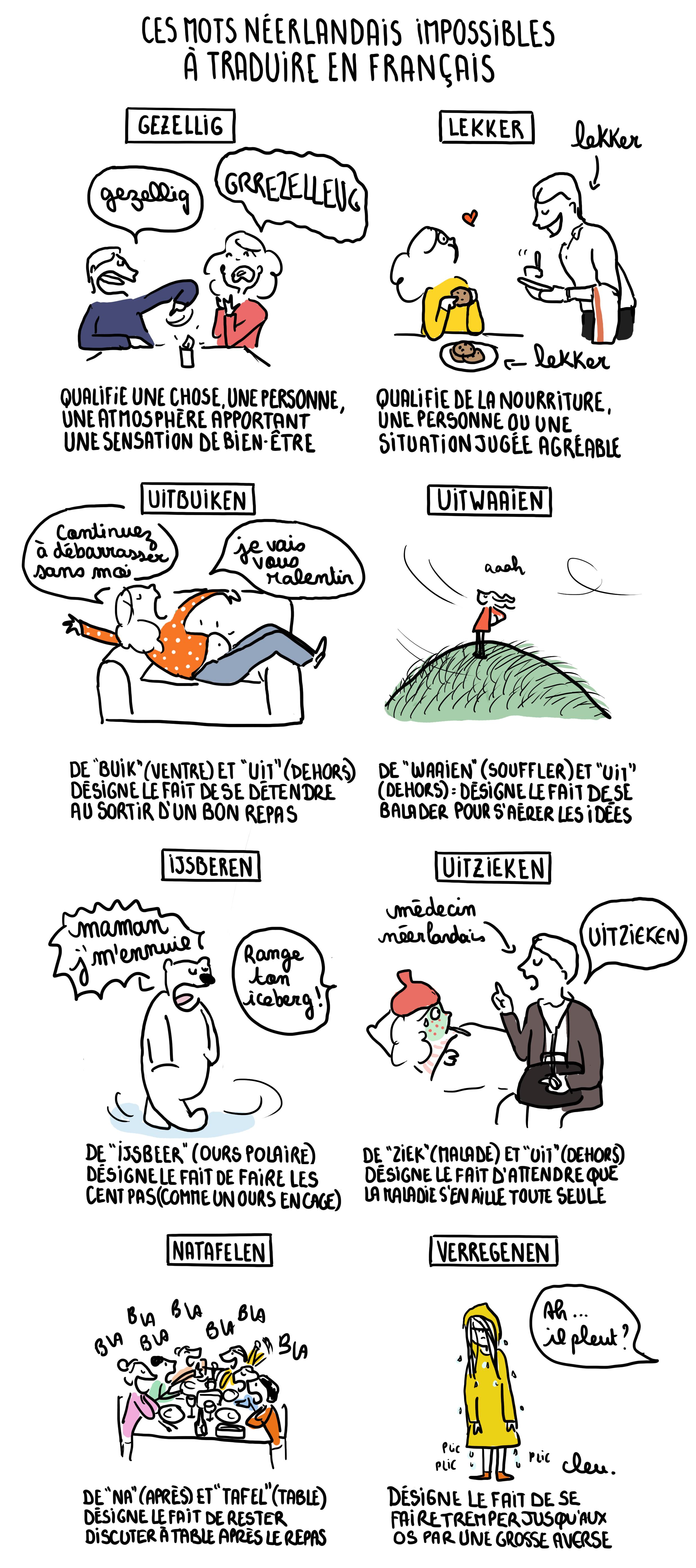 Cette bande dessinée illustre la difficulté de traduction de gezellig et 7 autres mots néerlandais