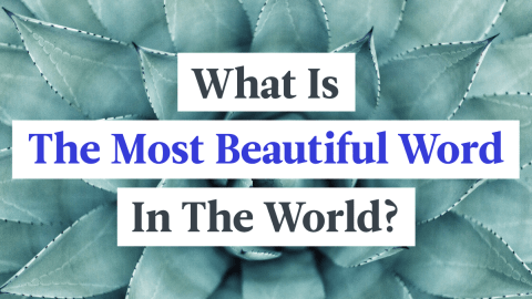 What Is The Most Beautiful Word In The World?