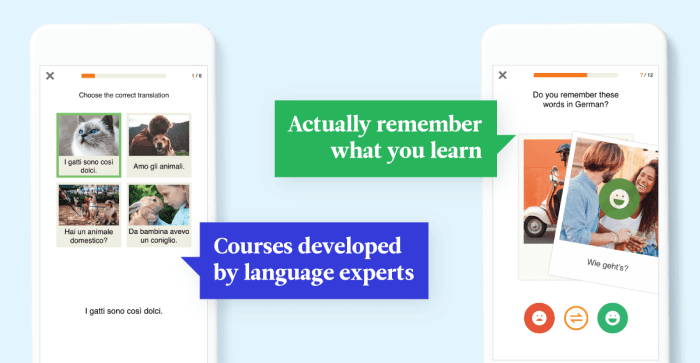 Language-Learning Obstacles — Review Manager