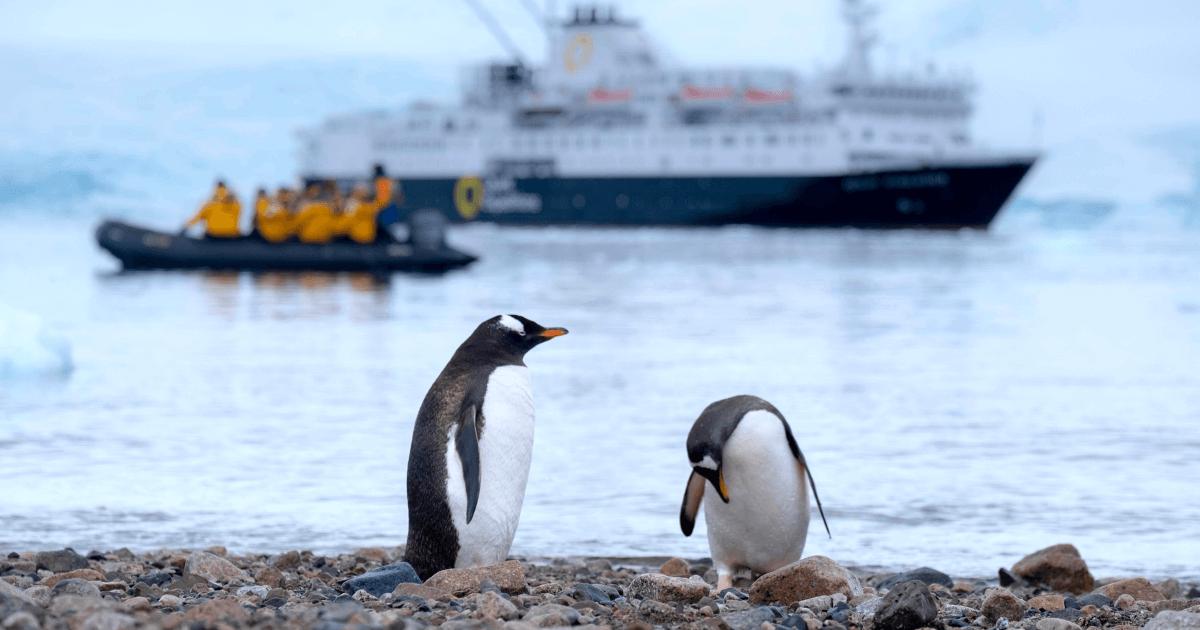 What Languages Are Spoken In Antarctica?
