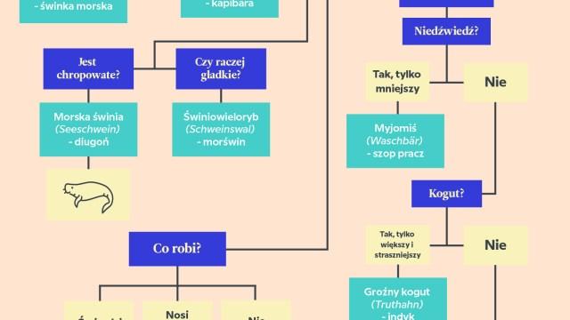 Zwierzęta po niemiecku: krótki przewodnik