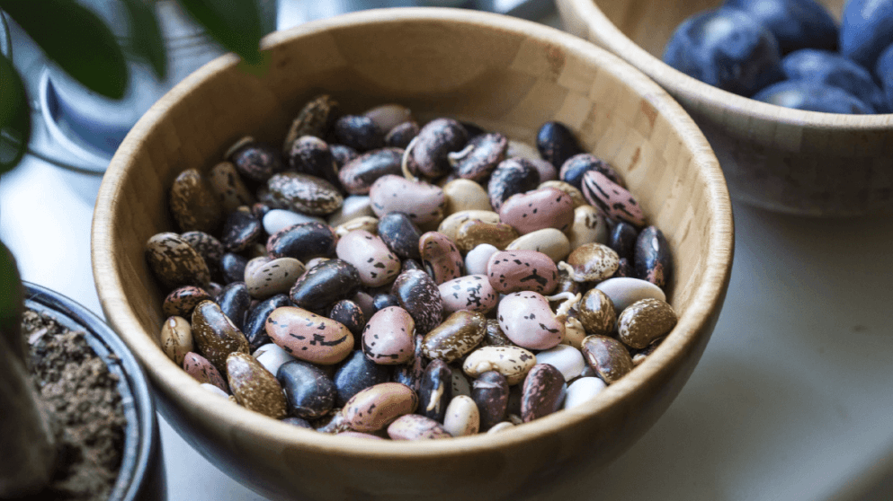 A Culinary Tour Of Beans Around The World's Cuisines