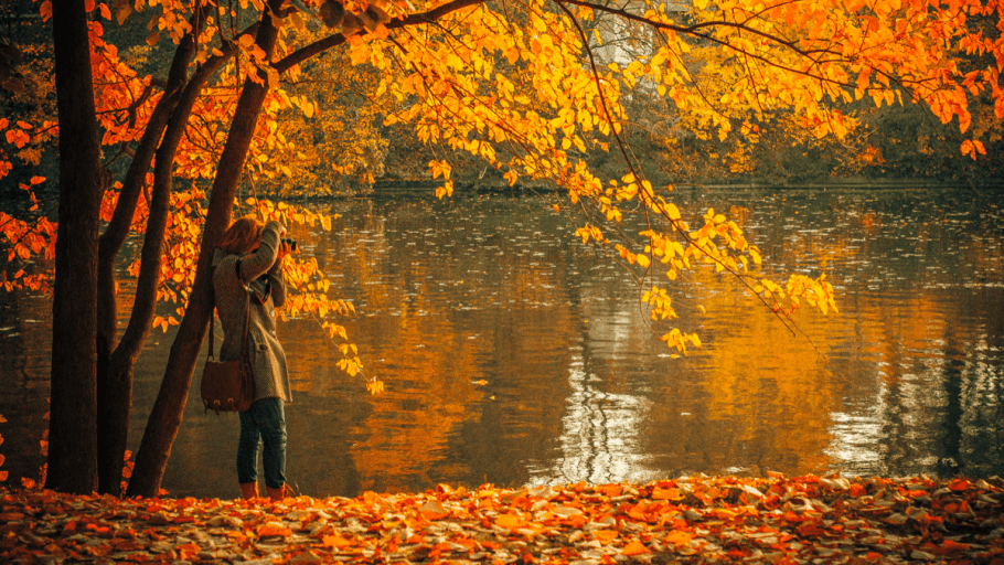 A woman taking photographs of the fall and autumn forest