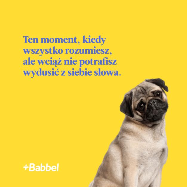 Internowy mem Babbel