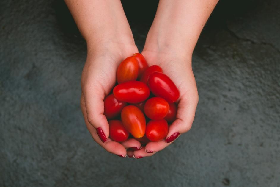 Hände halten leuchtend rote Tomaten