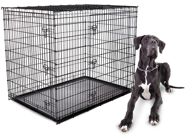 Large Dog Crate Dimensions The Best Dog 2017