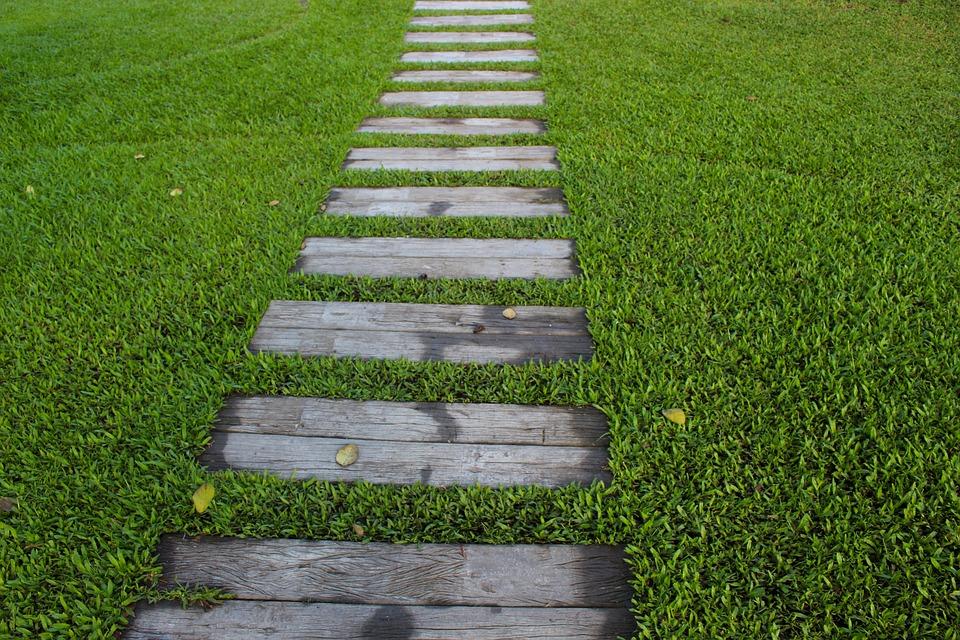 El césped pintará de verde el ingreso a tu vivienda. (Foto: Pixabay)