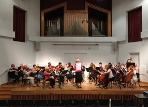 Adult Strings Concert May 17, 2016