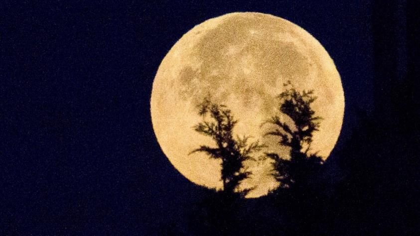 Image result for lunar eclipse images