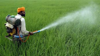 Scientists develop a gel to protect Indian farmers from toxic pesticide —  Quartz India
