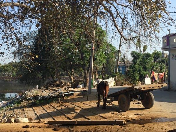 A village near Thanesar in Kurukshetra, Haryana where I met one of the women I spoke to.