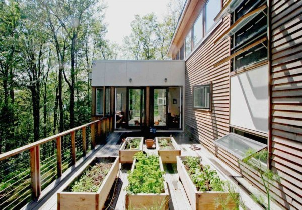 terrasse en bois avec potager dans foret