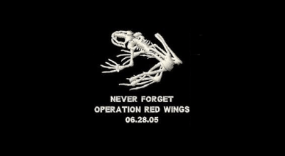Operation Red Wings II: Lone Survivor Recovery (Part I)