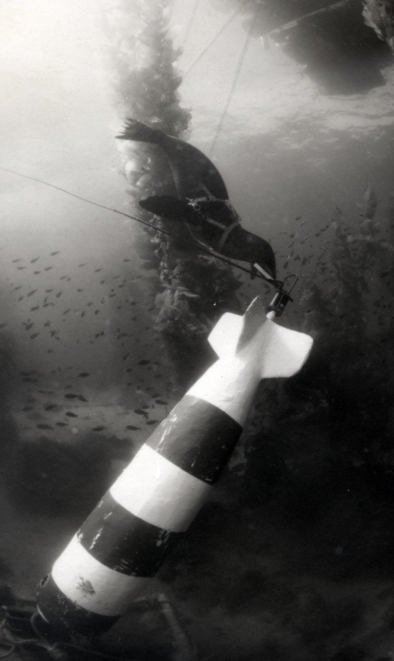 "A Mark V ""Sea Lion"" System At Work"