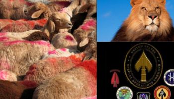 Lions Lead By Lambs: Washington's Special Operations Power Grab