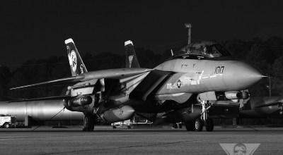 Gallery: Grumman F-14A/A+/D Tomcat