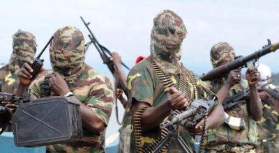 Niger Delta Avengers: We just blew up 2 Chevron oil wells