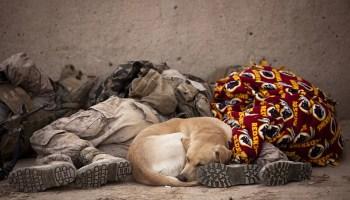 The art of sleeping anywhere