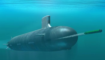DARPA takes a page out of Aquaman's book: Using marine wildlife to track enemy subs