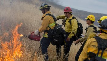 The Pic of the Day: Firefighters in California train with controlled fires