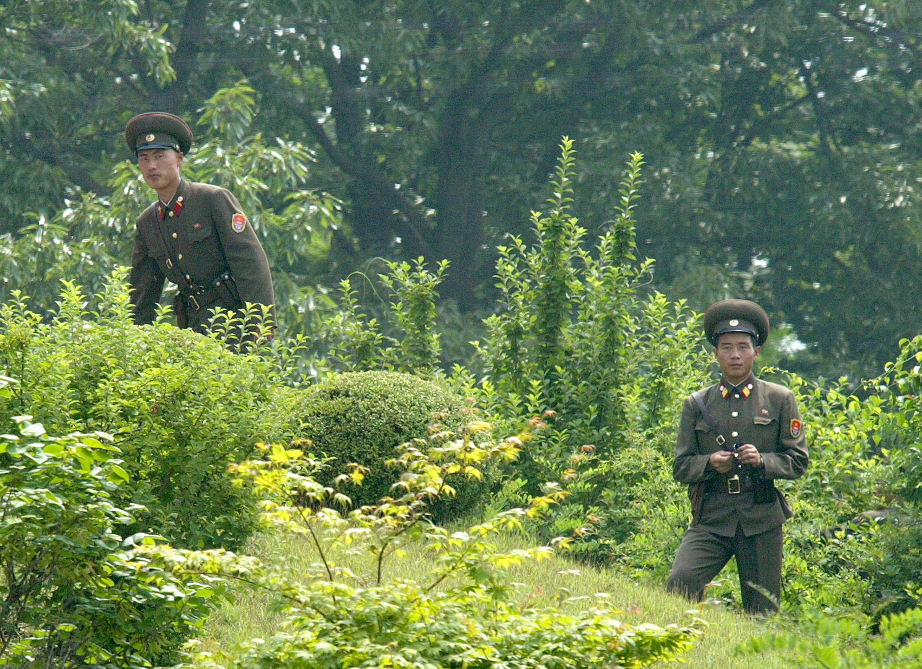 Report: Starving North Korean soldiers are now raiding civilian homes to find food