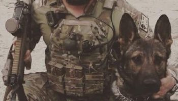 Making SOF and conventional canines deadlier