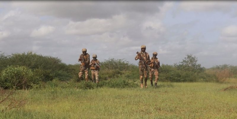 Photo of Danab Special Operations Unit: SNA