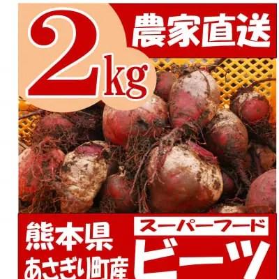 熊本県あさぎり町産 ビーツ 2kg 有機栽培 野菜 栄養 予約販売