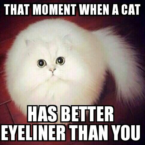 cliomakeup-eyeliner-senza-codina-18-meme