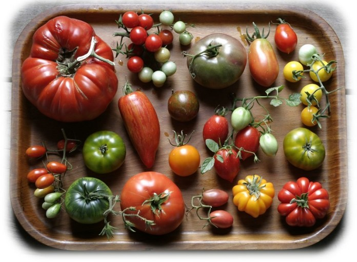 cliomakeup-dieta-mediterranea-biodiversità-15