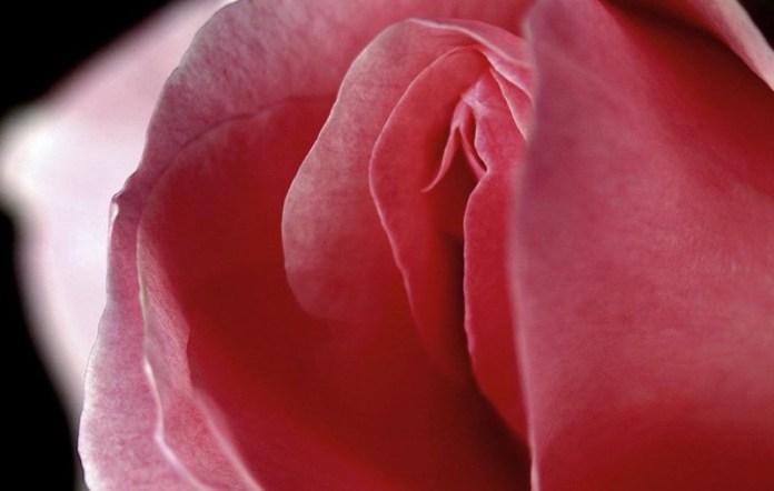 cliomakeup-odore-intimo-6-profumo