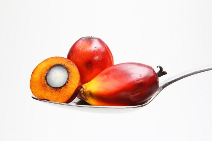 cliomakeup-olio-palma-frutto-2.jpg