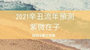2021辛丑流年預測-紫微在子盤