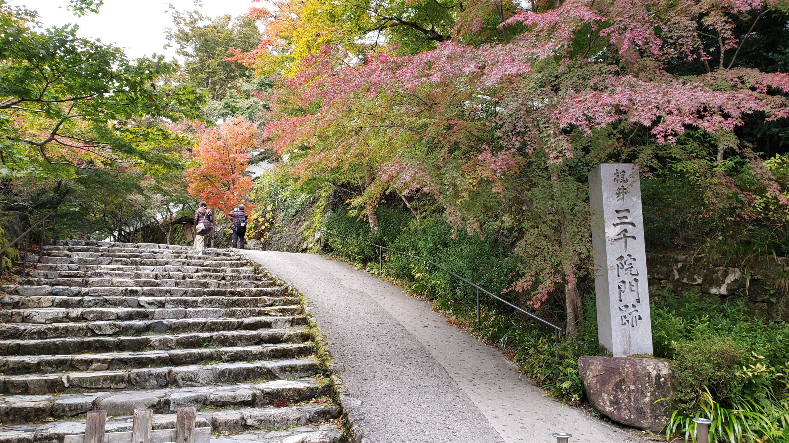 京都紅葉 大原 20201104