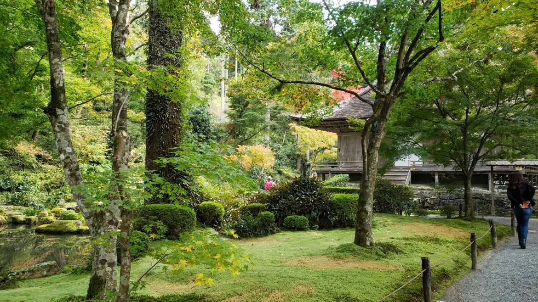 Kyoto Automne Feuilles Ohara 20201104