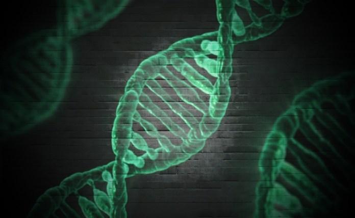 Xenetic Biosciences XBIO Stock News