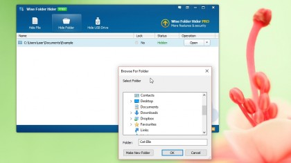 Download Wise Folder Hider free