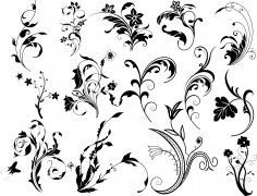 Swirl Floral Vectors Set Ai File